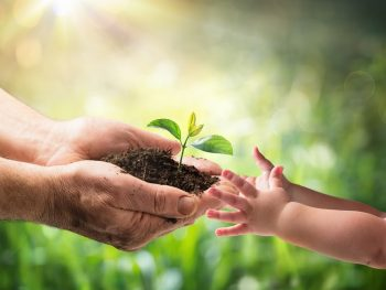 adult passing seedling to a small child